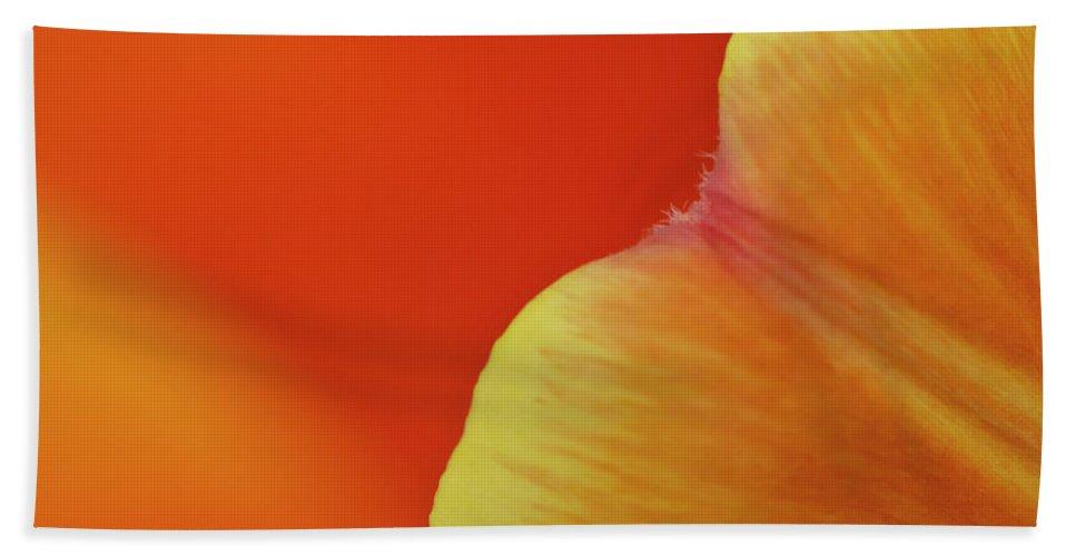 Orange Bath Sheet featuring the photograph Orange Tulip Petal Detail by Gary Eason