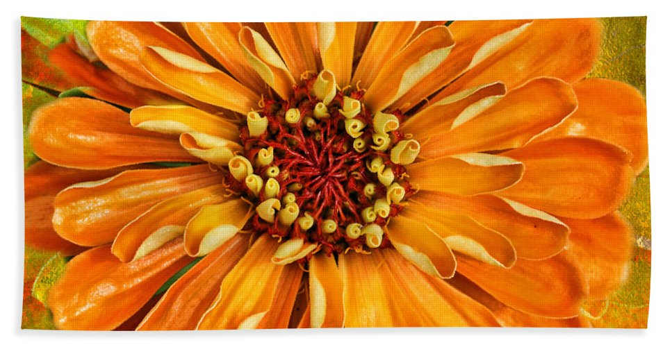 Flower Hand Towel featuring the photograph Orange Zinnia by Sari Sauls