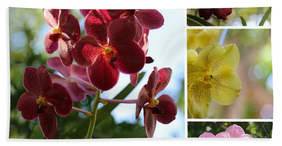 Orchid Bath Sheet featuring the photograph Orchid Collage by Carol Groenen