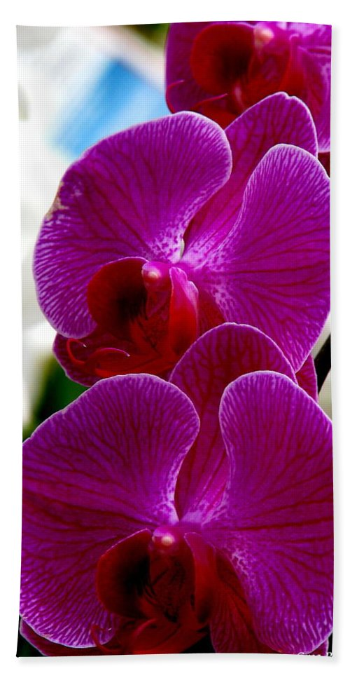 Art For The Wall...patzer Photography Bath Towel featuring the photograph Orchid by Greg Patzer