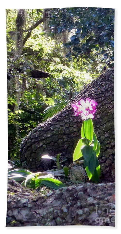 Orchid Hand Towel featuring the photograph Orchid In Tree 2 by Barbie Corbett-Newmin