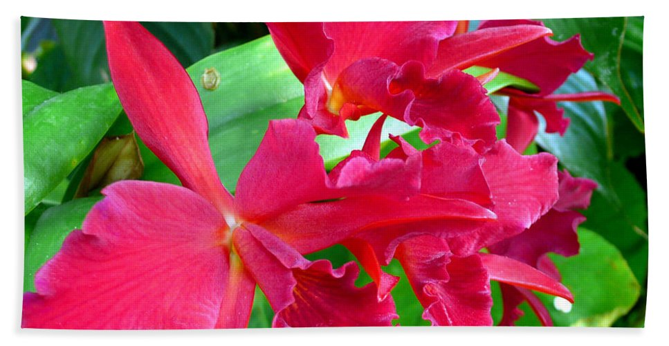Orchid Bath Sheet featuring the photograph Orchid Series 3 by Katy Hawk