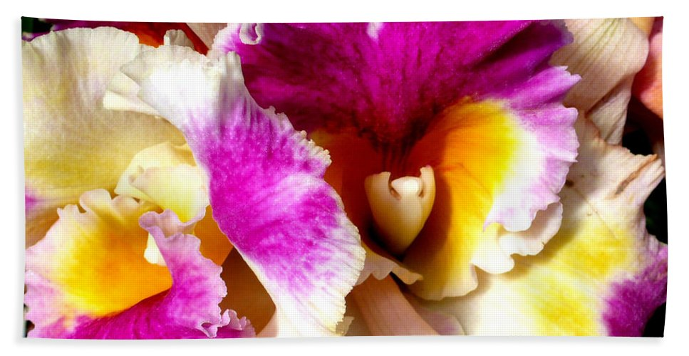 Orchid Bath Sheet featuring the photograph Orchid Series 6 by Katy Hawk