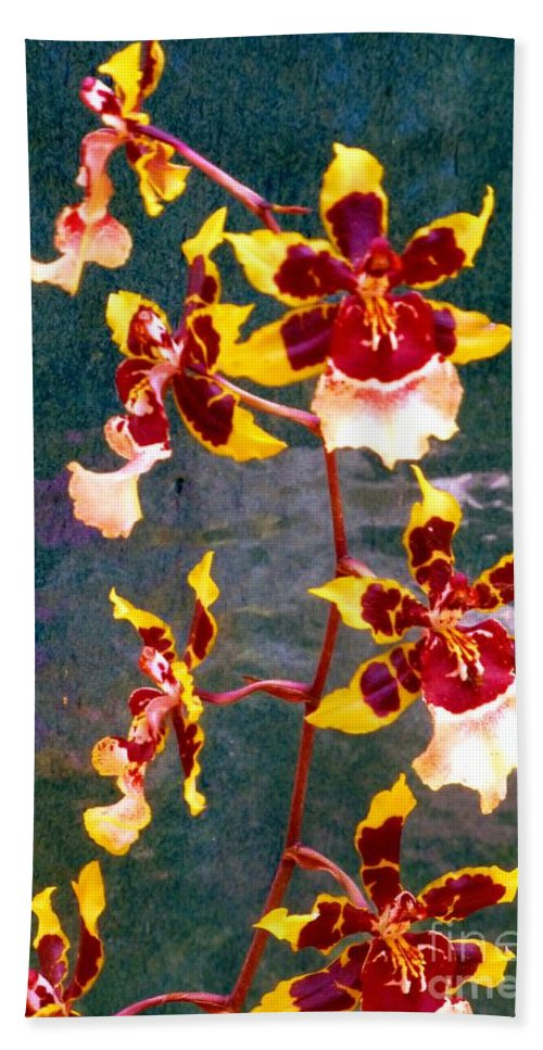 Orchid Hand Towel featuring the photograph Orchid Spray By Pottery by Barbie Corbett-Newmin