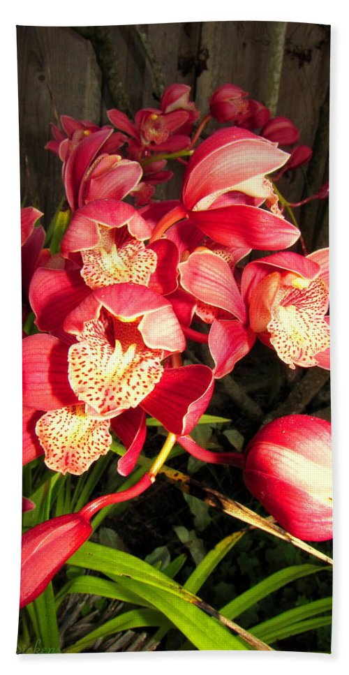Orchids Hand Towel featuring the photograph Orchids Galore by Joyce Dickens