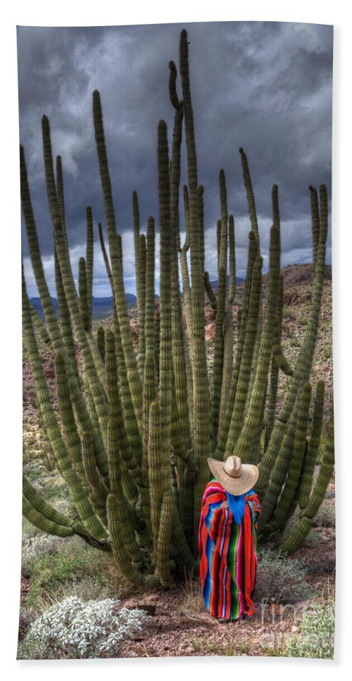 Sonoran Desert Hand Towel featuring the photograph Organ Pipe Cactus The Visitor 1 by Bob Christopher