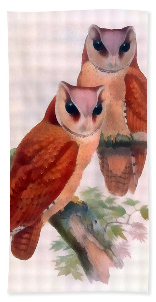 Oriental Bay Owl Hand Towel featuring the digital art Oriental Bay Owl by John Gould
