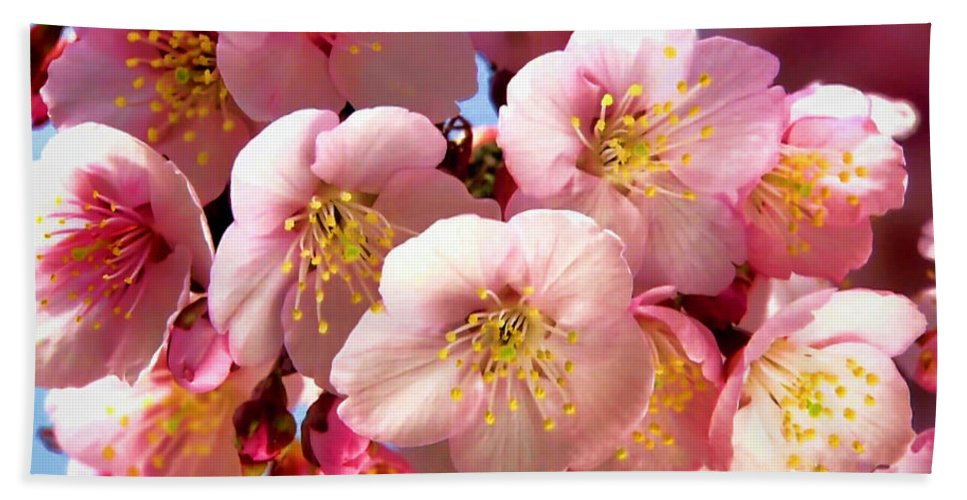 Flowers Hand Towel featuring the photograph Oriental Flowers by Lyriel Lyra