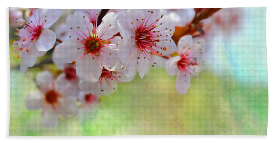 Nature Bath Sheet featuring the photograph Ornamental Plum II by Debbie Portwood