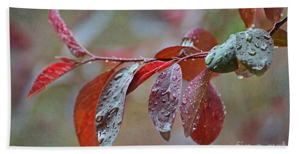 Nature Bath Sheet featuring the photograph Ornamental Plum Tree Leaves With Raindrops by Debbie Portwood