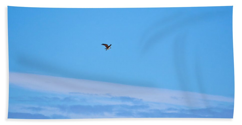 Finland Hand Towel featuring the photograph Osprey And A Pike High Over The Clouds by Jouko Lehto