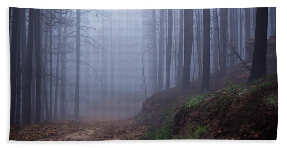 Fog Bath Sheet featuring the photograph Out Of The Mist - Casper Mountain - Casper Wyoming by Diane Mintle