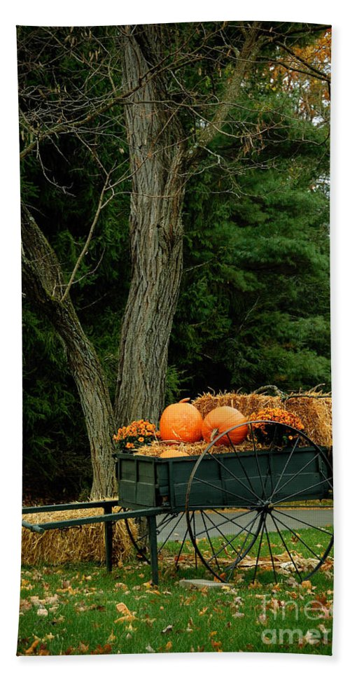 Autumn Hand Towel featuring the photograph Outdoor Fall Halloween Decorations by Amy Cicconi