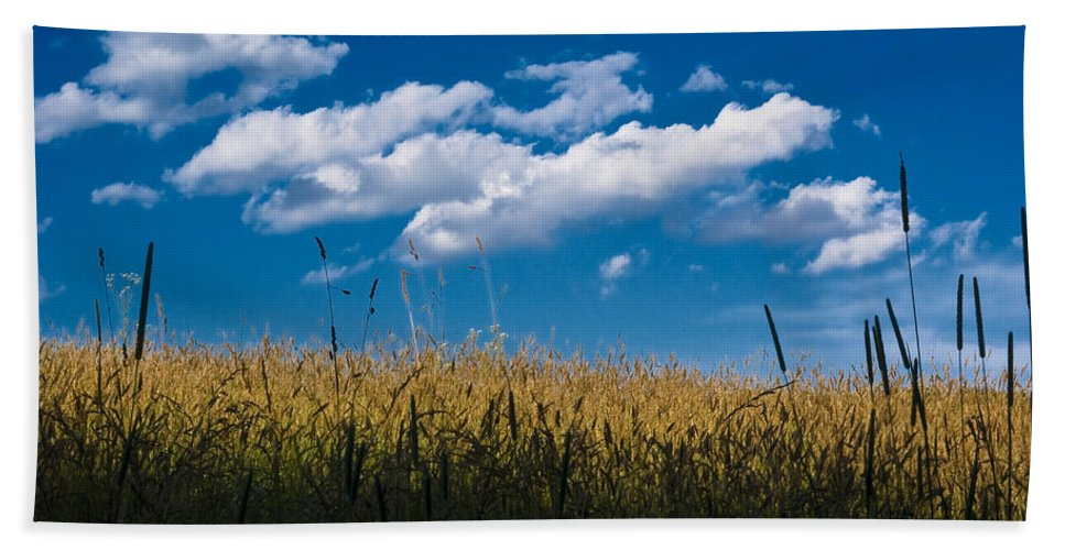 Sky Hand Towel featuring the photograph Over The Grass by Samantha Eisenhauer
