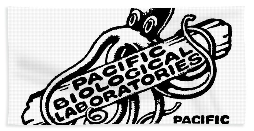 Pacific Biological Laboratories Bath Sheet featuring the photograph Pacific Biological Laboratories Of Pacific Grove Circa 1930 by California Views Archives Mr Pat Hathaway Archives