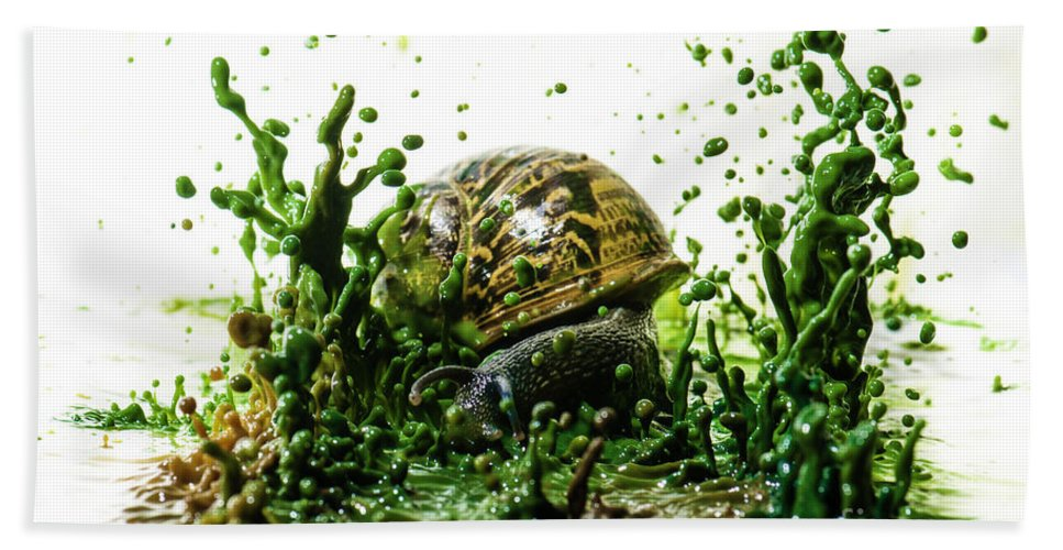 Impact Hand Towel featuring the photograph Paint Sculpture And Snail 3 by Guy Viner