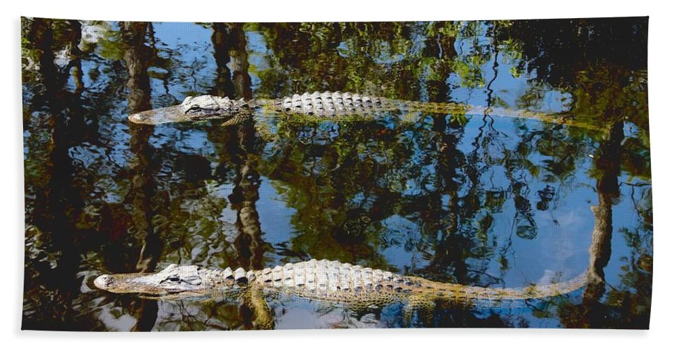 American Hand Towel featuring the photograph Pair Of American Alligators by Rudy Umans