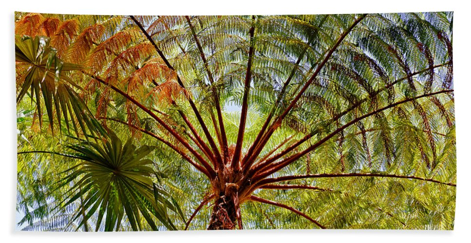 Palm Tree Bath Sheet featuring the photograph Palm Canopy by Jim Thompson