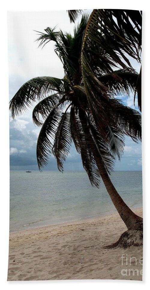 Beach Hand Towel featuring the photograph Palm On The Beach by Christiane Schulze Art And Photography