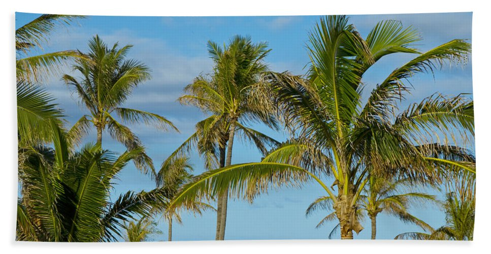Palm Trees Bath Sheet featuring the photograph Palm Trees by Doug LaRue