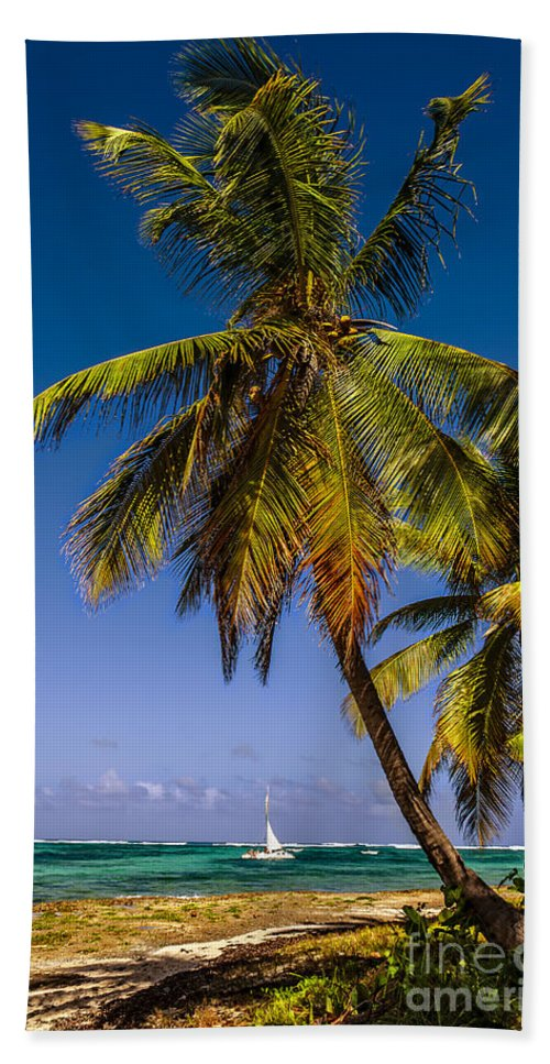 Caribbean Hand Towel featuring the photograph Palm Trees On The Beach by Viktor Birkus