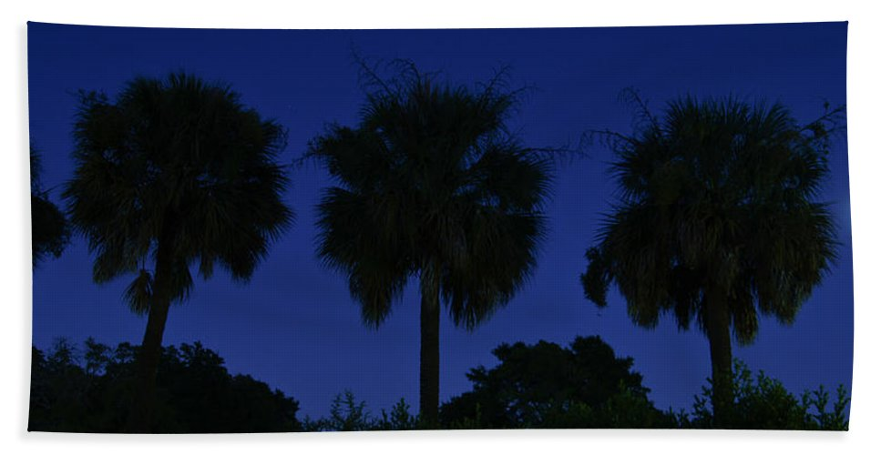 Palmetto Hand Towel featuring the photograph Palmetto Moon by E Karl Braun