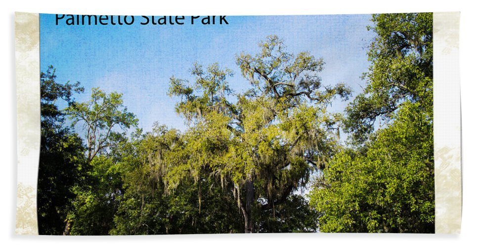 Palmetto State Park Bath Sheet featuring the photograph Palmetto State Park by Gary Richards