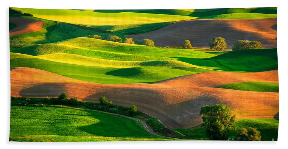 America Bath Sheet featuring the photograph Palouse Fields - June by Inge Johnsson