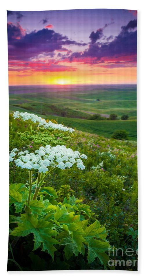 America Hand Towel featuring the photograph Palouse Flowers by Inge Johnsson