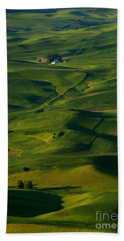 Palouse Hand Towel featuring the photograph Palouse Green by Mike Dawson