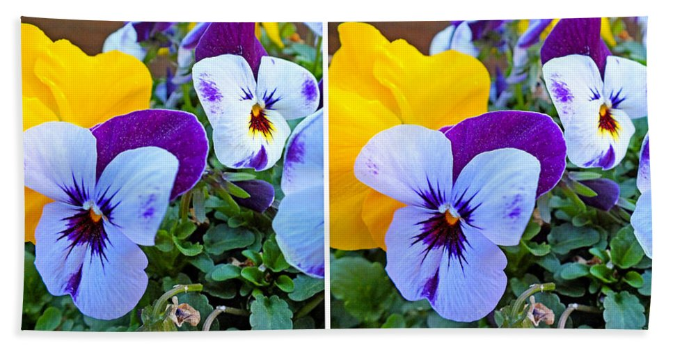 Plants Bath Sheet featuring the photograph Pansies In Stereo by Duane McCullough
