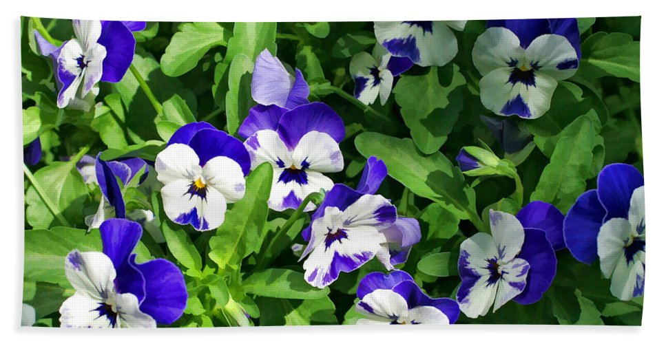 Pansy Hand Towel featuring the photograph Pansies by Joyce Baldassarre