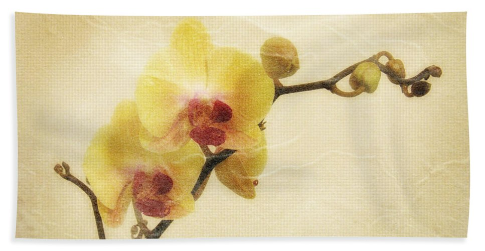 Orchid Hand Towel featuring the photograph Paper Flowers by Donna Blackhall