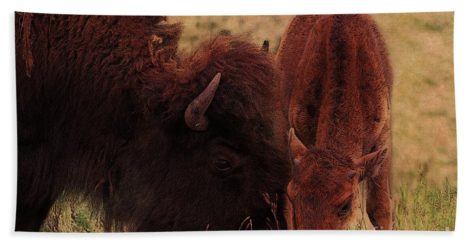 Buffalo Hand Towel featuring the photograph Parent With Newborn Calf Bison by Janice Pariza