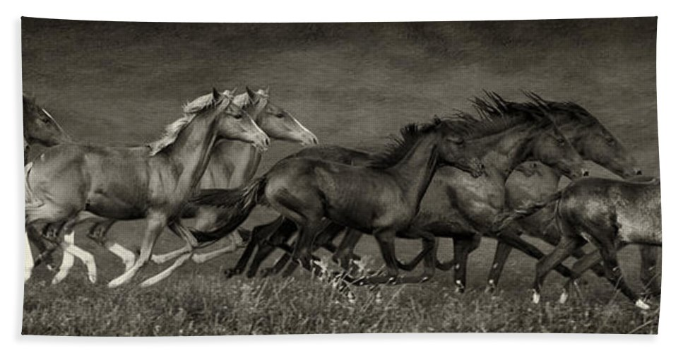 Horse Hand Towel featuring the photograph Paso Peruvian Horses On The Run by Priscilla Burgers