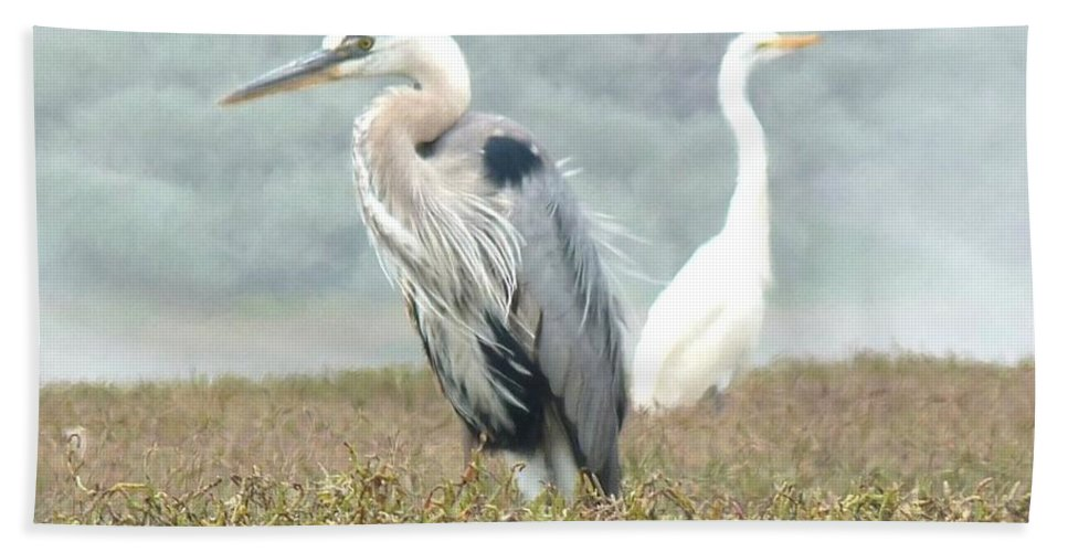 Great Blue Heron Hand Towel featuring the photograph Passing In Opposite Directions by Kris Hiemstra