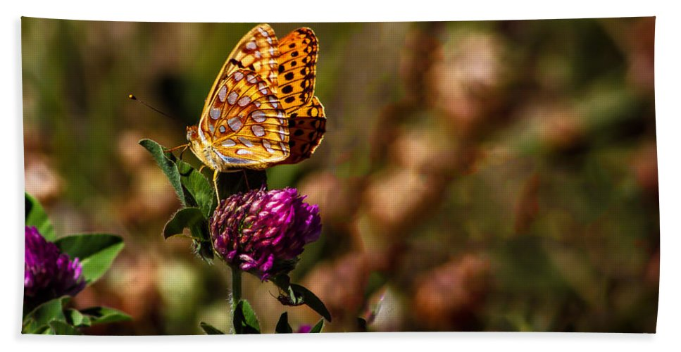 Butterfly Bath Sheet featuring the photograph Passion Butterfly by Robert Bales