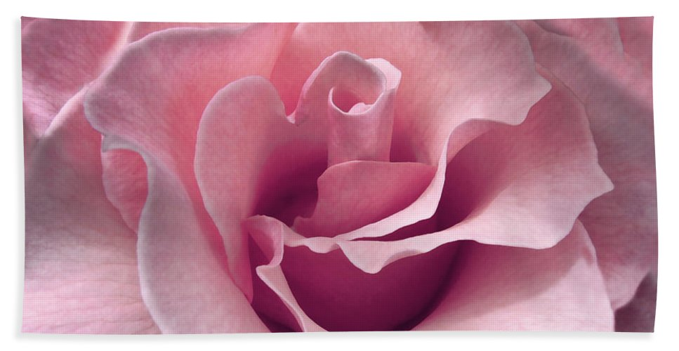 Rose Hand Towel featuring the photograph Passion Pink Rose Flower by Jennie Marie Schell