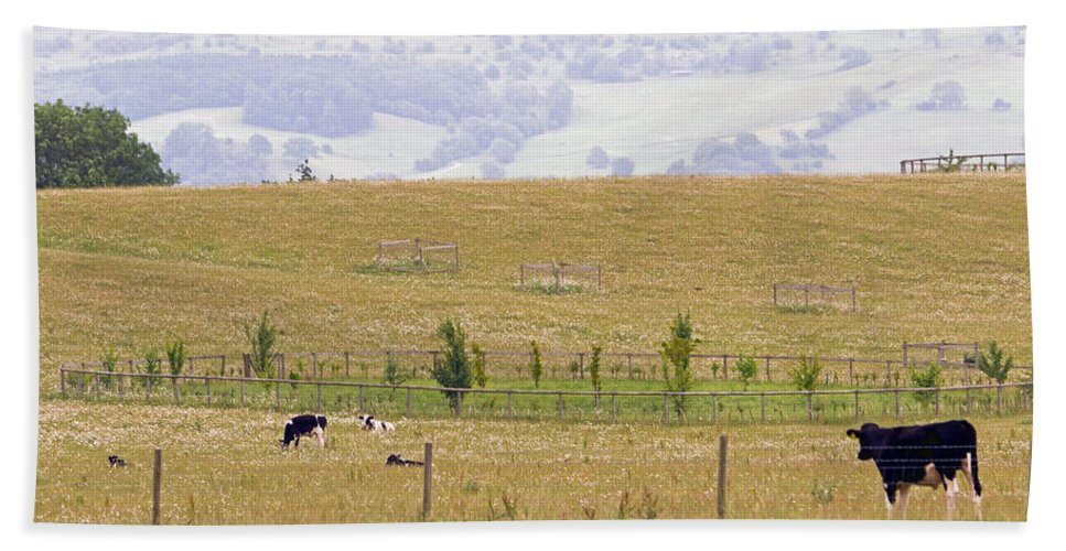 Grazing Hand Towel featuring the photograph Pastoral by Keith Armstrong