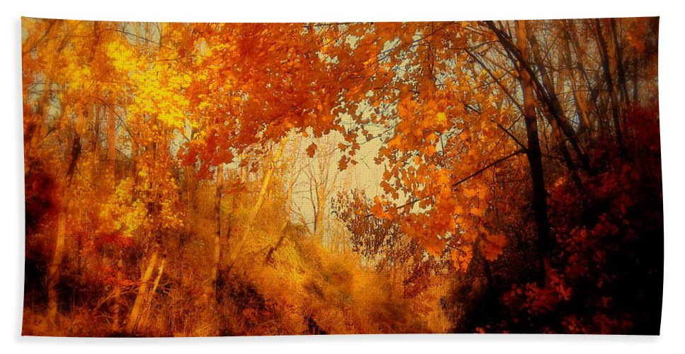 Path Bath Sheet featuring the photograph Path Of Gold by Tami Quigley