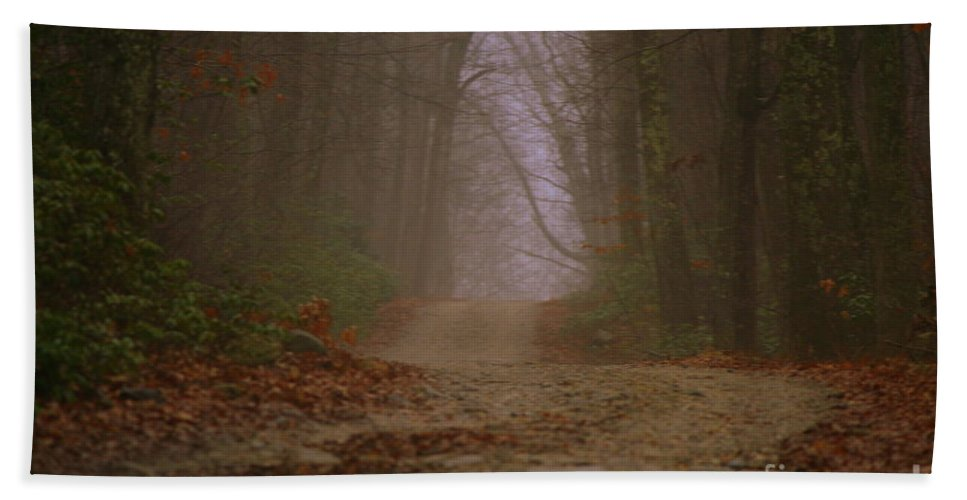 Country Road Bath Sheet featuring the photograph Path To Wolf Den by Neal Eslinger