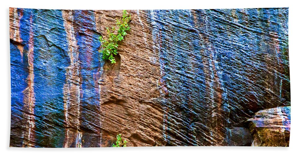 Pattern On Wet Canyon Wall From River Walk In Zion Canyon In Zion National Park Bath Sheet featuring the photograph Pattern On Wet Canyon Wall From River Walk In Zion Canyon In Zion National Park-utah by Ruth Hager