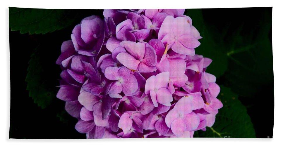 Hydrangea Bath Sheet featuring the photograph Peaceful Beauty by Jennifer Stackpole
