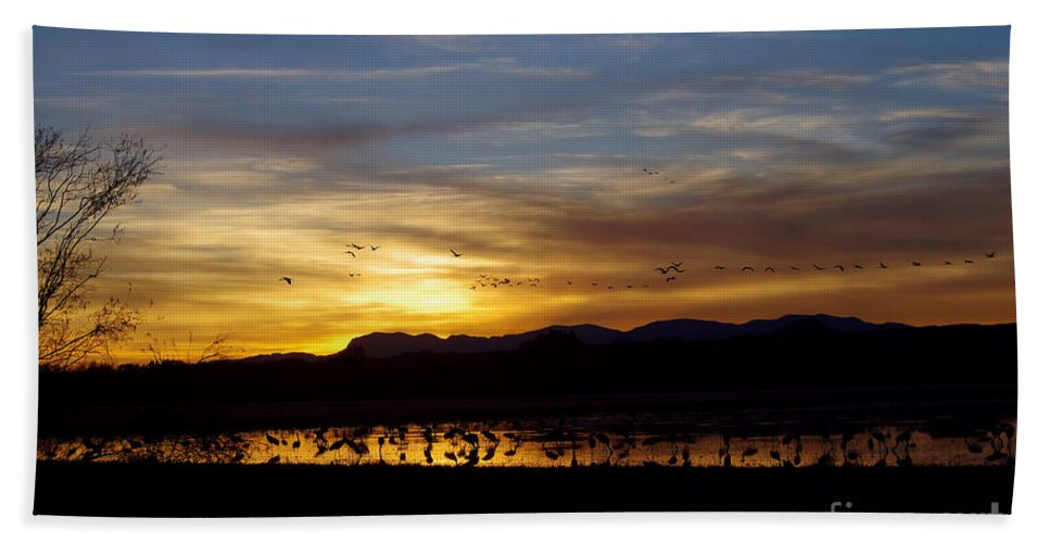 Photography Bath Sheet featuring the photograph Peaceful Endings by Vicki Pelham