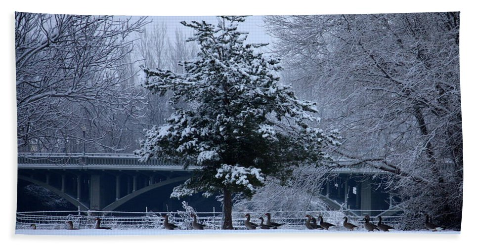 Peaceful Winter Landscape Bath Sheet featuring the photograph Peaceful Holiday Card - Winter Landscape by Carol Groenen