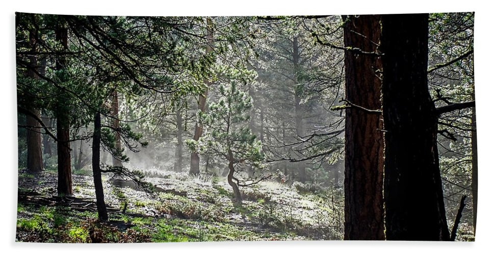 Colorado Hand Towel featuring the photograph Peaceful Morning by Ernie Echols