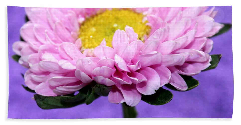 Pink Flower Bath Sheet featuring the photograph Peaceful Thoughts by Krissy Katsimbras