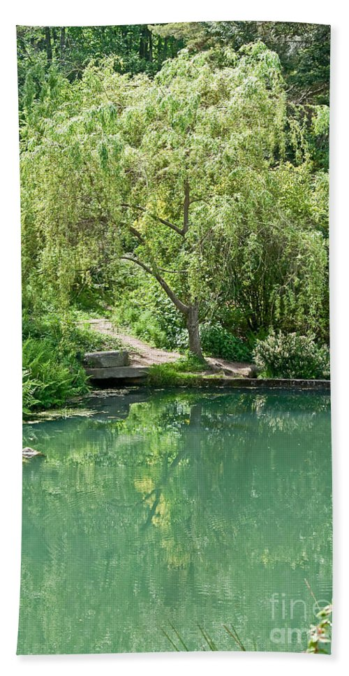 Tree Bath Sheet featuring the photograph Peaceful Willow Tree Art Prints by Valerie Garner