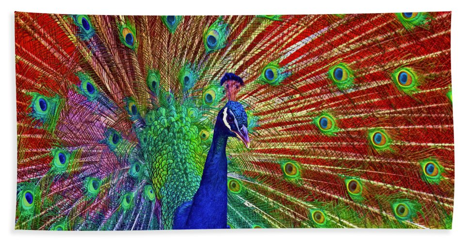 Peacock Bath Sheet featuring the photograph Peacock In Front Of Red Barn by Jerry Gammon