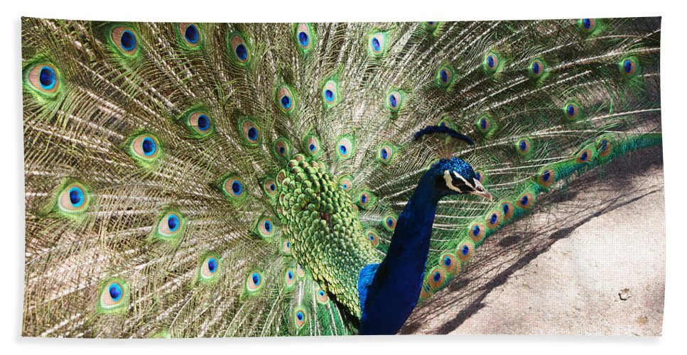 Bird Hand Towel featuring the photograph Peacock Show by Ernie Echols